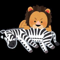 ライオンがシマウマを食べる弱肉強食の様子
