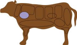 牛肉のかたの部位
