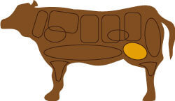 牛肉のももの部位