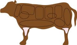 牛肉のすねの部位